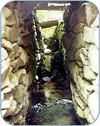 Rock Culverts & Railbed Trail Image